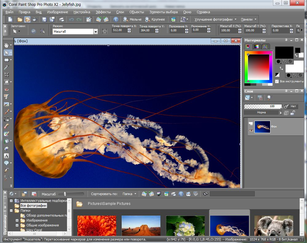 interface corel paint shop pro